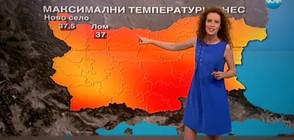 Прогноза за времето (23.06.2017 - централна)
