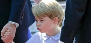 Разпространиха нов фотопортрет на принц Джордж (СНИМКА)