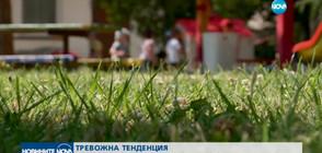 Все по-малко български семейства осиновяват деца у нас