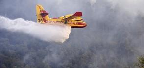 Пожари унищожиха над 3000 хектара гори в Югоизточна Франция (ВИДЕО+СНИМКИ)