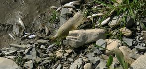 Намалиха глобата за замърсяването на река Ботуня (СНИМКИ)