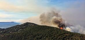 ЗАРАДИ ГОРСКИ ПОЖАР: 10 000 евакуирани от Френската Ривиера (ВИДЕО+СНИМКИ)