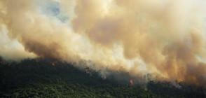 ПОМОЩ ОТ ВЪЗДУХА: Наш хеликоптер гаси пожарите в Македония