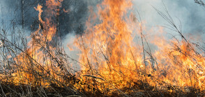 Разследват петима за пожарите в Македония
