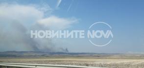 Стотици декари гора отново пламнаха край Изворище (ВИДЕО+СНИМКИ)