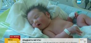 Тризнаците, родени след 9 неуспешни опита инвитро, са добре (ВИДЕО)