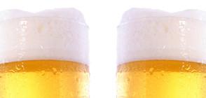 Създадоха безхмелна бира с несравним вкус на хмел