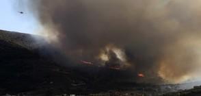 Пожарите в Гърция са овладени (СНИМКИ)