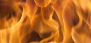 Дамска чанта пламна от само себе си по време на заседание (ВИДЕО)