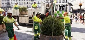 СЛЕД АТАКАТА: Мадрид ще пази пешеходците с бетонни саксии с цветя (СНИМКИ)