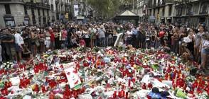 Изчезнал имам в Испания е смятан за ключова фигура при атентатите