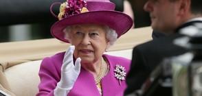 Кралица Елизабет II няма намерение да се отказва от престола