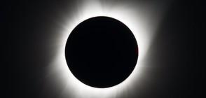 Настъпи пълното слънчево затъмнение над САЩ (ВИДЕО+СНИМКИ)