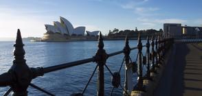 Монтират изкуствен риф около операта в Сидни