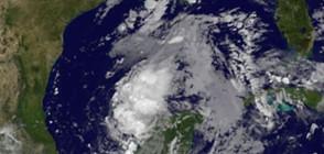 "САЩ под тревога заради циклона ""Харви"""