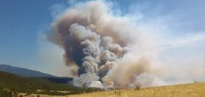 ПОЖАР НАД КРЕСНА: Евакуират хора, хеликоптери гасят огъня (ВИДЕО+СНИМКИ)