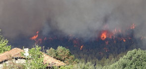 ОГНЕНА СТИХИЯ НАД КРЕСНА: 500 души и два хеликоптера гасят пожара (ВИДЕО+СНИМКИ)