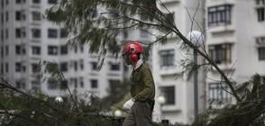 """Расте броят на жертвите на тайфуна """"Хато"""" (ВИДЕО)"""