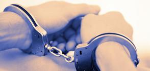 Арестуваха трима иманяри в Силистренско