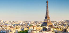 Напаст от плъхове заплашва улиците на Париж