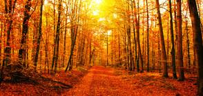 Климатолог: Лятото си отива, ще имаме топла есен