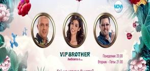 Шеф Петров, Тони Стефанов и Мегз са номинирани за изгонване във VIP Brother 2017