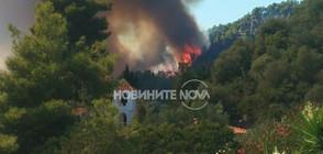 ПОЖАРЪТ НА ХАЛКИДИКИ: Българи бягали от огъня към морето (ВИДЕО)
