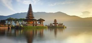 12-годишен открадна кредитната карта на родителите си, отиде в Бали на почивка
