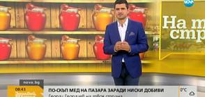 Китайски мед като български - как да го разпознаем? (ВИДЕО)