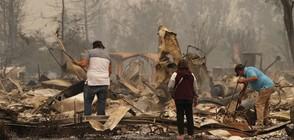 Опустошителни пожари бушуват в Калифорния (ВИДЕО)
