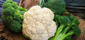 Учени препоръчват всеки ден да ядем броколи или карфиол