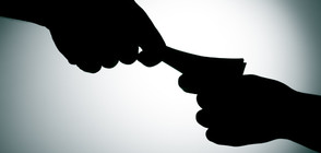 """Галъп"": 41% от българите знаят за случаи на шуробаджанащина"
