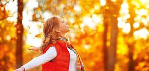 Какво време ни очаква до края на есента?