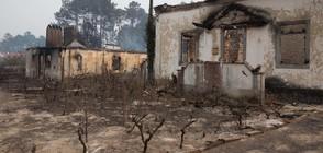 Оставки и вот на недоверие заради пожарите в Португалия