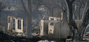 ПОЖАРИТЕ В КАЛИФОРНИЯ: Жертвите са вече 42, десетки са в неизвестност