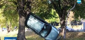 """Кола """"кацна"""" между две дървета в парк в Стара Загора (ВИДЕО)"""