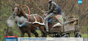 ЗА ЕВРОПРЕДСЕДАТЕЛСТВОТО: Искат пълна забрана за каруци в София (ВИДЕО)