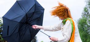 Жълт код за силен вятър в 12 области в страната