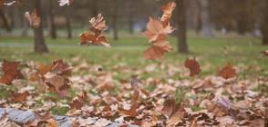 Опасни ветрове и минусови температури