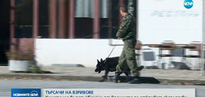 Кучета ще бъдат обучени от военните да откриват eксплозиви (ВИДЕО)