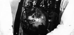 60 години от изпращането на кучето Лайка в Космоса (ВИДЕО+СНИМКИ)