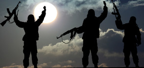 Президентът на Иран обяви края на ИДИЛ