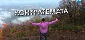 Контратемата на Даниел Петканов (18.11.2017)