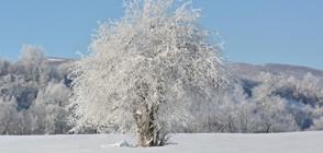 Климатолог: Мощно затопляне ще последва първия сняг (ВИДЕО)