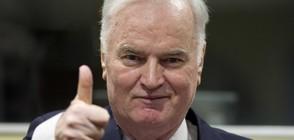 Ратко Младич обжалва присъдата си за геноцид и военни престъпления