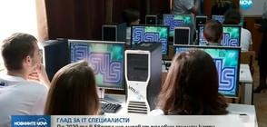 Глад за IT специалисти в цяла Европа