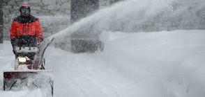 Сняг парализира Западна Европа (ВИДЕО+СНИМКИ)