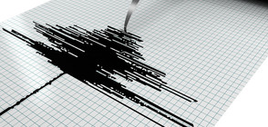Две земетресения разлюляха Гърция (ВИДЕО)