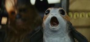 """Поргите от """"Междузвездни войни"""": Очарователни или противни? (ВИДЕО+СНИМКИ)"""