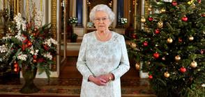 Коледните традиции, които спазва британското кралско семейство (ГАЛЕРИЯ)
